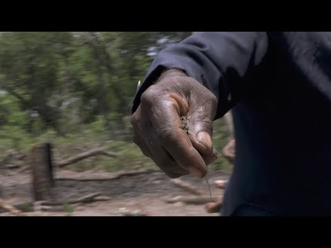 Smart Cuts - Client LWF - Documentary on land grabbing in Angola