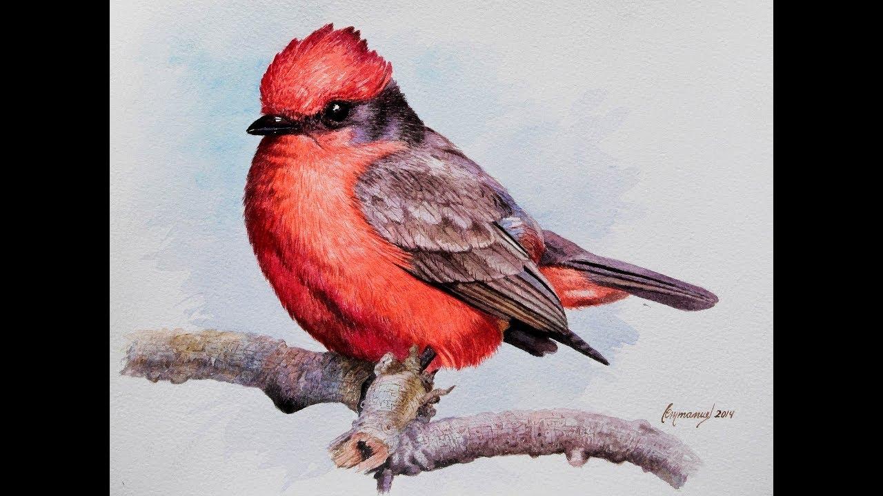 a redbird christmaschapters 4 5