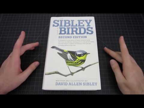 Field Guides: Sibley Guide & Allaboutbirds.org