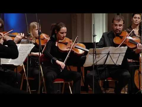 Tchaïkovski | Sérénade pour orchestre à cordes Op. 48 - Mvnt1 (extrait)