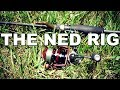 The Ned Rig - The Ultra Finesse Rig for Bass Fishing