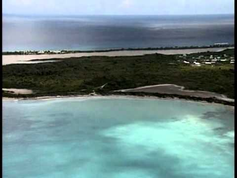 CARIBBEAN ISLANDS IN PERIL - Short Wildlife Environment Documentary
