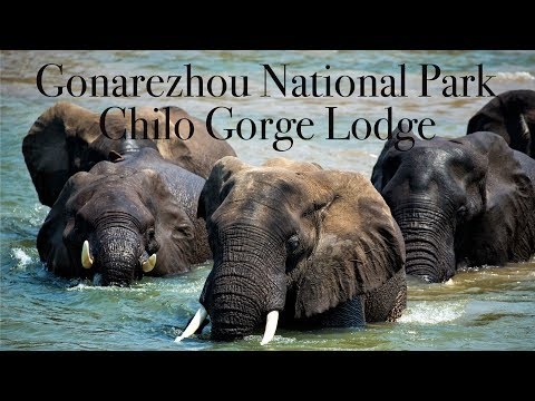 Gonarezhou National Park , Chilo Gorge Lodge , Zimbabwe - 4K UHD