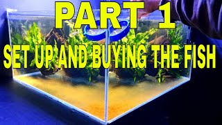How To Breed Otocİnclus Catfish Part 1 Set Up.