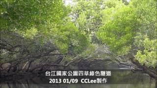 台江國家公園四草綠色隧道 20130109 Mangrove in Taijang N.park