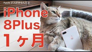 iPhone8Plusを使って1ヶ月:良かったこと、残念だったことのまとめレビュー thumbnail