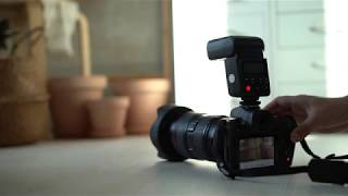 카메라 플래시 고독스 V350C 연사촬영 테스트 (캐논…