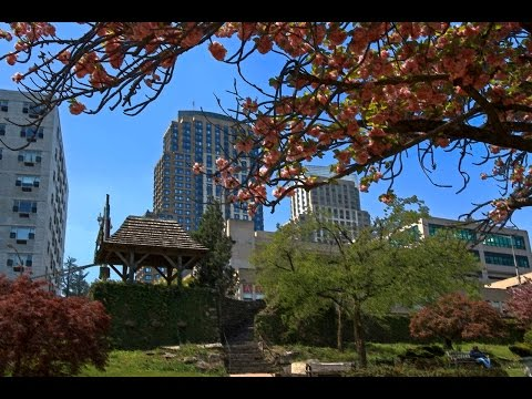 For Sale in Downtown White Plains - 10 City Place #16A - 10601