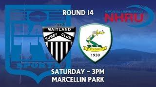 2018 NHRU Round 14 Premier 1 - Maitland v Merewether Carlton thumbnail