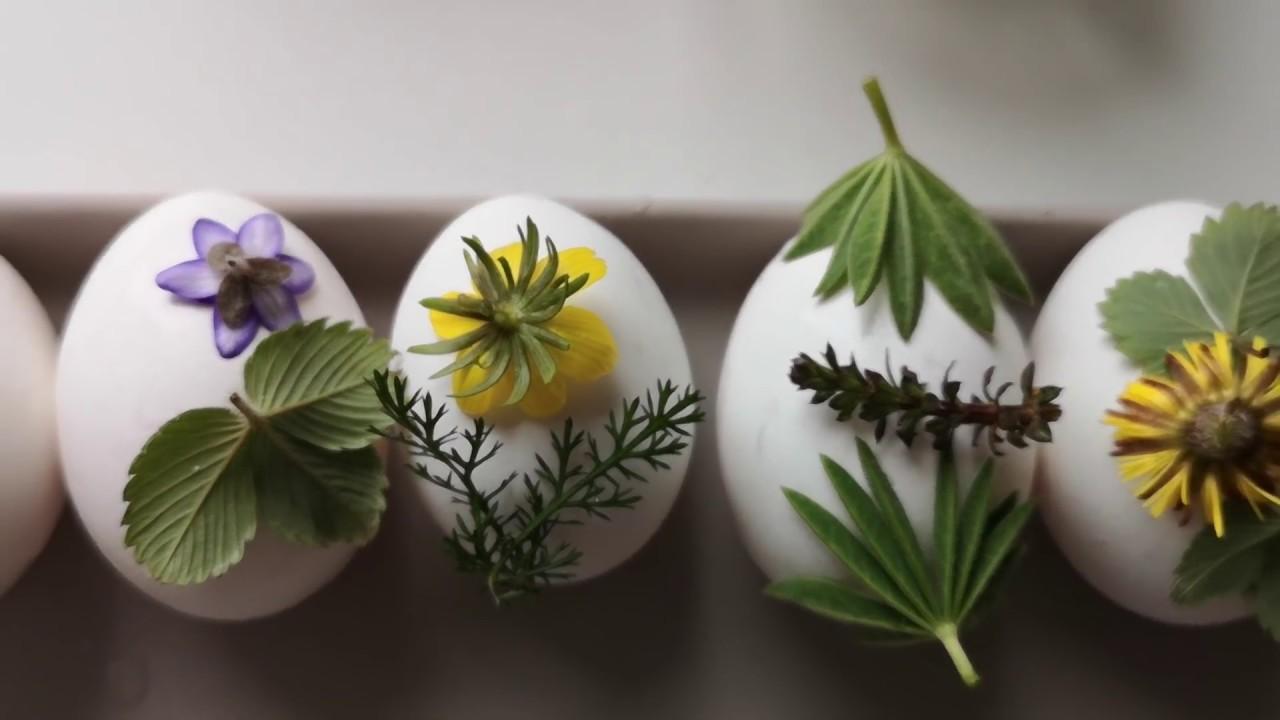 Как покрасить яйца на пасху.Чем можно покрасить яйца на ...