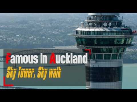 Would You Like to visit Auckland !