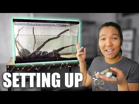HOW TO SET UP A TURTLE TANK 🐢- Step By Step