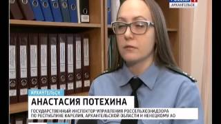 """Инспекторы """"Россельхознадзора"""" изъяли в Архангельске 100 килограммов рыбы"""