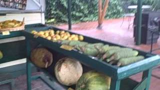 The Fruit Market at Fairchild Farm in Homestead Florida