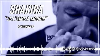 Shakira (Francis Cabrel) - Je l'aime à mourir - Harmonica Bb