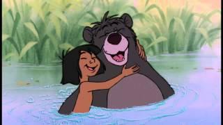 Video Jungle Boek | Liedje: Als Je Van Beren Leren Kan (Reprise) | Disney NL download MP3, MP4, WEBM, AVI, FLV April 2018