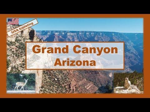 USA traveling : Grand Canyon discovering and hiking  #arizona
