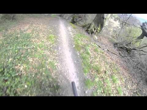 Wyllie XC Downhill