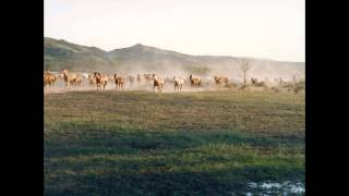 Norman Luboff Choir - Night Herding Song.avi