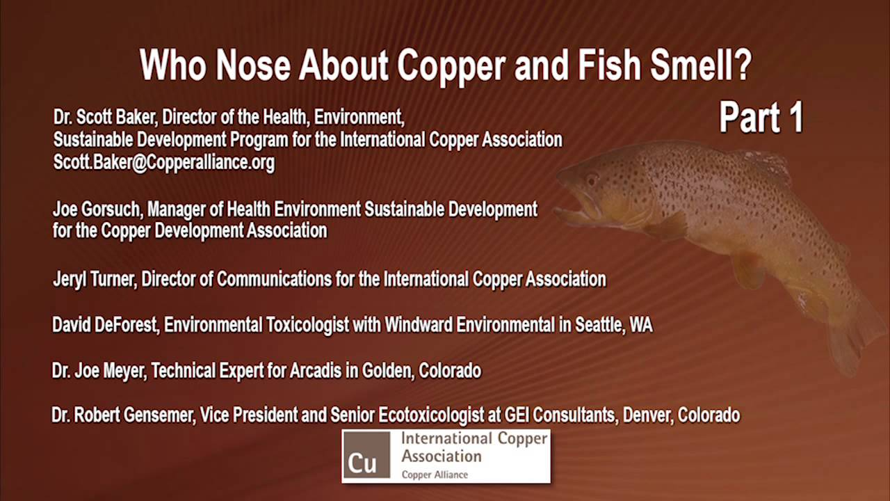 Who Nose About Copper and Fish Smell? Part 1