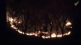 Waldbrand Hohensyburg – Nachtaufnahmen vom Feuerwehreinsatz am 27.03.2017