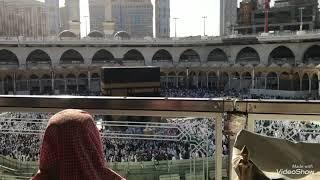 هاشم السقاف | اذان العصر 1439/4/24هـ