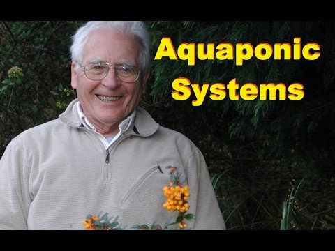 Aquaponic Bio Filter 1 - Homemade Bio Filter For Aquaponic Systems