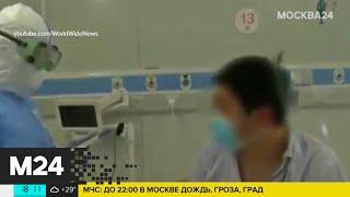 Врачи рассказали о способах заражения бубонной чумой - Москва 24