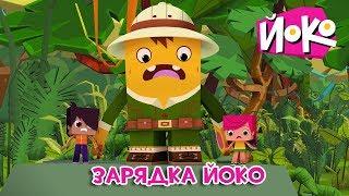 Весёлые мультфильмы - ЙОКО - Зарядка Йоко - Трейлер - Мультики для детей