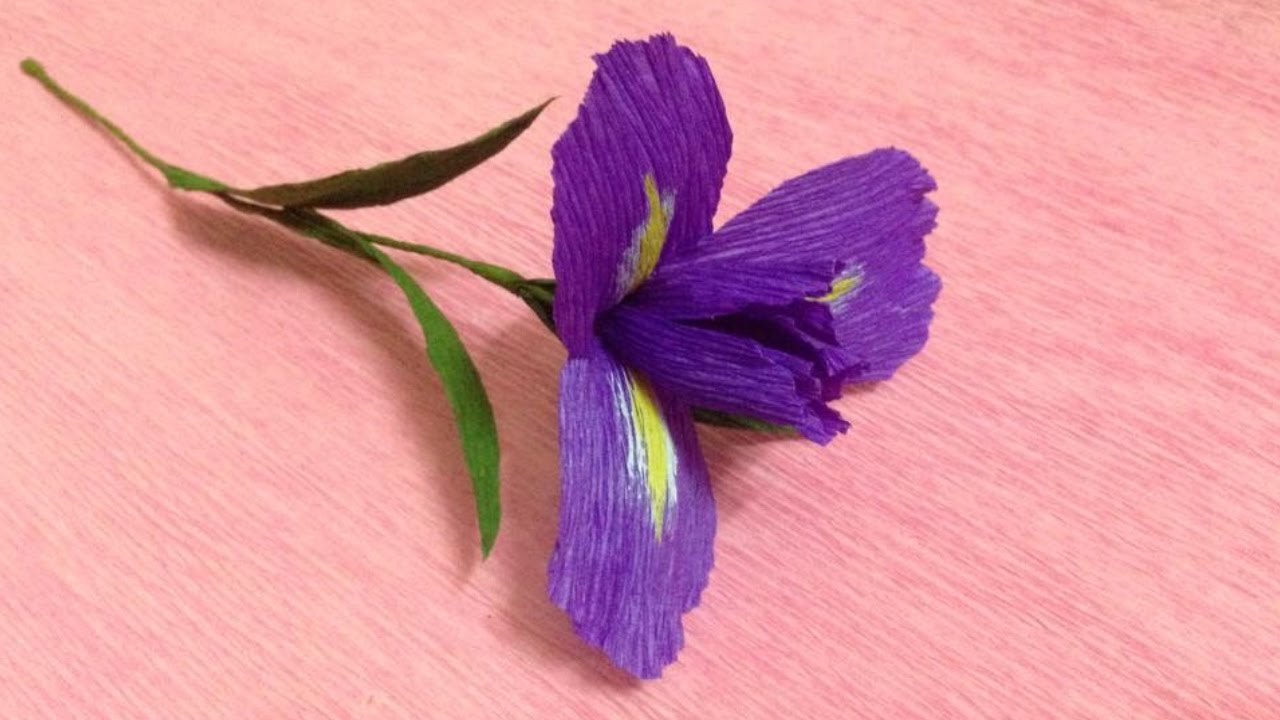 How To Make Iris Crepe Paper Flowers Flower Making Of Crepe Paper
