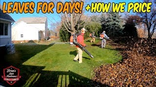 $175 in 1.5 Hours ► How WE Price LEAF Clean Ups + DUMP INSERT In Action!