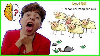 Brain Out Lv 140 Phần 7 | Tìm Con Chó Sói Trong Đàn Cừu