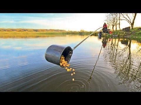 Steve Ringer's Skills School - Winter carp fishing in the margins