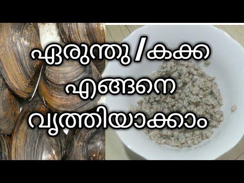 കക്ക  or ഏരുന്തു  എങ്ങനെ ക്ലീൻ ചെയ്യാം /How to clean clams before cooking Malayalam