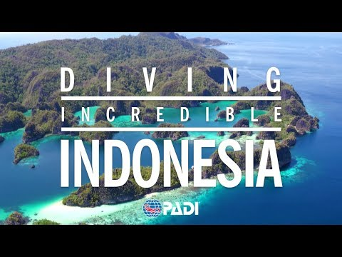 Diving Incredible Indonesia 🐠