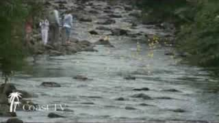 The Gogo Duck Race from Coast TV