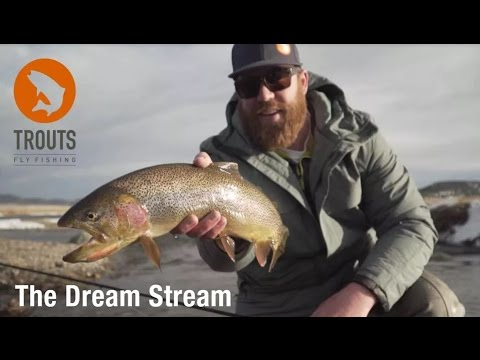 Trouts Winter Fly Fishing Colorado: The Dream Stream