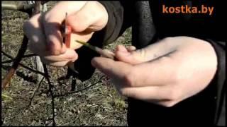 Прививка садовых деревьев черенком в расщеп