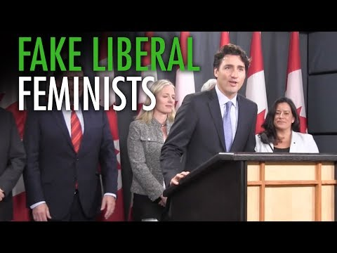 """Liberals attack Leitch for calling out """"wife beaters from Syria"""""""