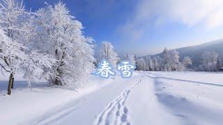 『春雪 』   作詞・作曲:大塚幸栄 編曲:竜崎孝路