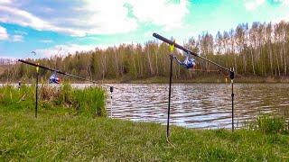 """Зачетные караси на лесном озере! Рыбалка на кормаки """"Убийца Карася""""!"""