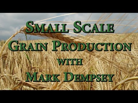 Small Scale Grain Production with Mark Dempsey