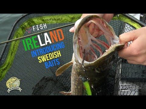 ♡ F.I.S.H - Introducing Swedish Baits - [Fuck It Shit Happens] - Kanalgratis.se