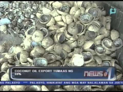 Coconut oil export, tumaas ng ptv,59%