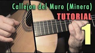 Pulgar Exercise - 42 - Callejon del Muro (Minera) INTRO by Paco de Lucia