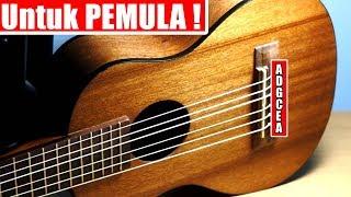 Boleh Di COBA ! Tutorial Cara MUDAH Stem Gitarlele Untuk Pemula