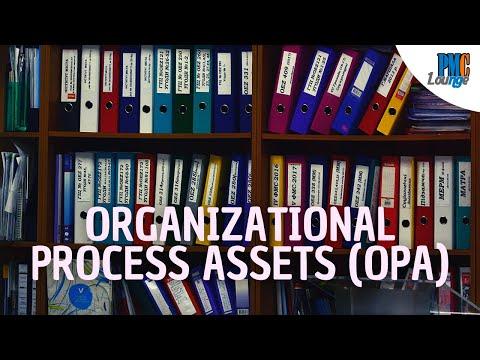 Organizational Process Assets (OPA)