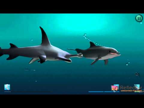 """I Am Dolphin"" iOS Gameplay Video - Bandit vs. Hammer Shark and 2 Dogfish"