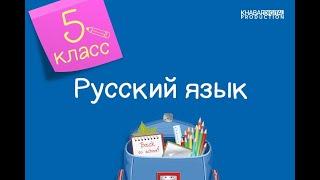 Русский язык 5 класс Звёздное небо Правописание окончаний существительных 01 04 2021