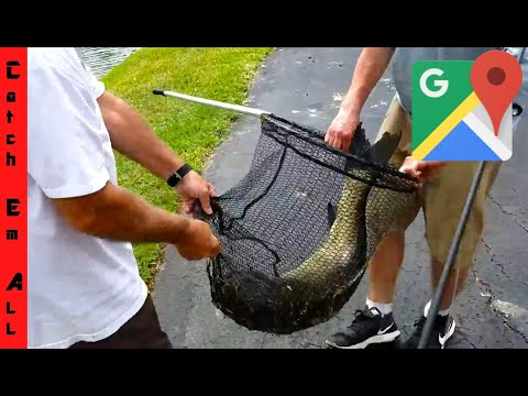 FINDING CRAZY FISHING SPOT On GOOGLE MAPS! Take The FISH!